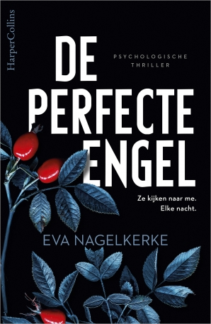 de-perfecte-engel